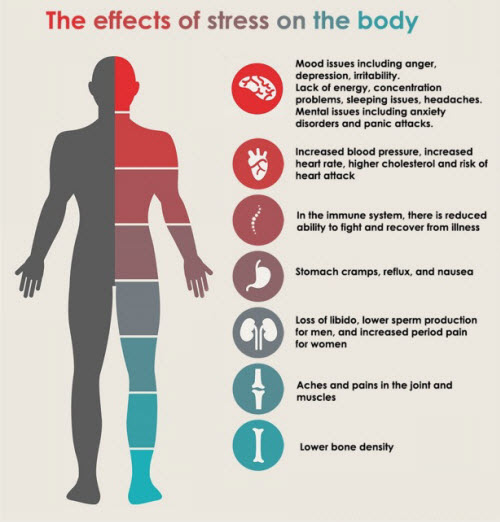 Stress effects 2