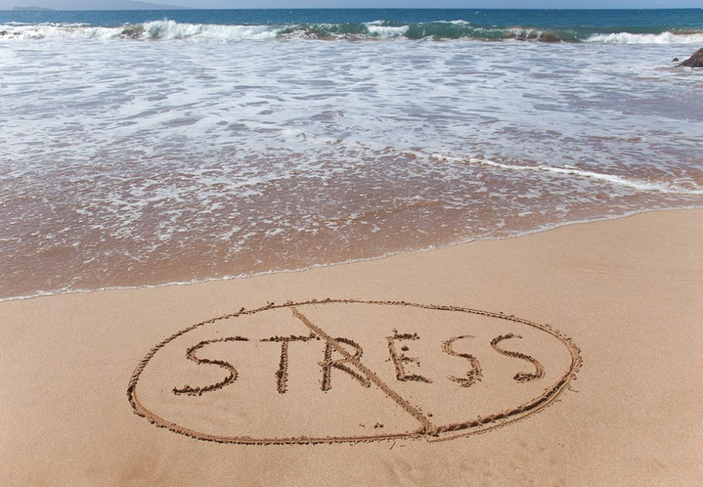 Fight Stress